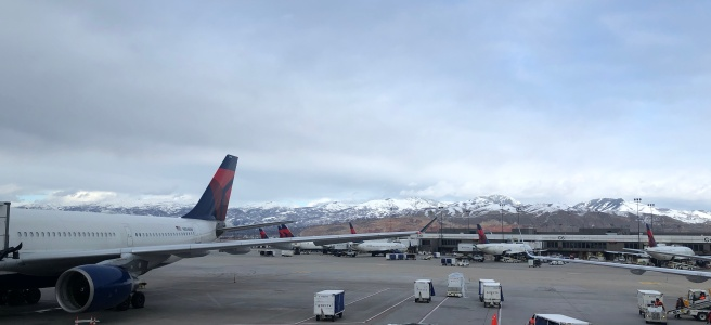 Photo of a Delta jet at SLC