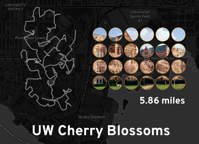 """Ingress mosaic map of the """"UW Cherry Blossoms"""" mission."""